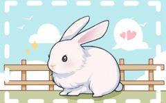 63年的兔2022年幸运色是什么 蓝色催旺事业财运
