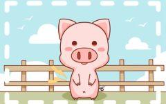 2022年属猪禁忌颜色 生肖猪的幸运色查询