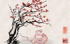 2021年属蛇人桃花最旺几月 爱情运势旺盛