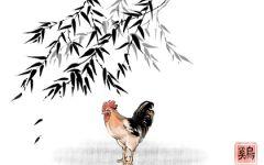 2021年属鸡的九月份的运气怎么样 偏财运旺收入上升