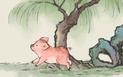 2021年九月属猪人的财运如何 财运旺赚钱机会多