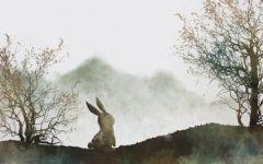 2021年属兔九月份感情运势 主动有望脱单