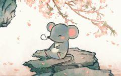 96年属鼠正缘是什么时候 兔年属鼠人结婚最幸福