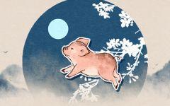 属猪的富豪出生在几月 几月猪能够赚大钱