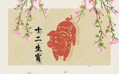 属猪的人在虎年运气如何 文昌吉星庇佑逢凶化吉
