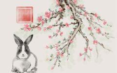 生肖兔与鼠婚姻配对 以诚相待感情稳定