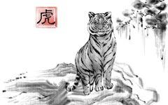 几点出生的虎是懒虎 懒虎是什么意思
