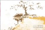 天然玛瑙原石图片欣赏,天然玛瑙原石图片大全