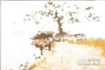 黑玛瑙原石图片欣赏,黑玛瑙原石图片大全