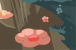 多肉植物天狼星图片精选