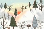 大雪与腊梅美丽景色欣赏,大雪节气风景图大全