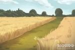 世界上的四大草原是哪四个