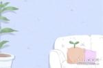 孕妇梦见好多鞭炮有什么含义吗?