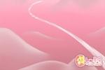 剑兰花花语都有哪些_你了解几个?