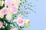 哈萨克族图案_哈萨克族都有哪些美丽图案?