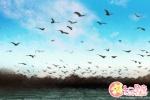 花朝节的纪念_花朝节是为了纪念谁?