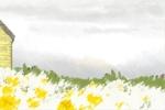 春分养生粥有哪些功效呢|春分养生粥做法及功效介绍