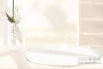 白菊花花语_白色菊花有哪些含义?