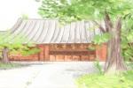 黄菊花花语是什么_有哪些含义?