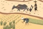 土族的传统节日土族有哪些传统节日?