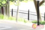 玛丽亚每周星座爱情运势【2017.4.3-4.9】