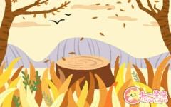 盂兰盆节法会仪轨具体是指什么?