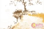 如何辨别四大名绣 中国四大名绣的区别
