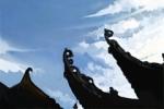 关于春天的农谚 二十四节气谚语