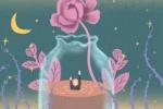 11朵粉色康乃馨花语是什么