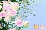 民间传说 彝族插花节的由来传说