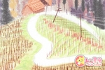 海百合星座周运【2018.1.29-2.4】
