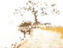 农历甲子年是哪一年 甲子年历法怎么算