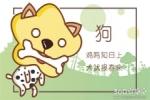 十二生肖本周运程【2018.4.3-4.9】