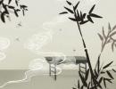 矢车菊的花语大全之纤细优雅