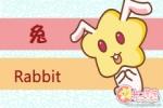 属兔人一般会因为什么事情而炸毛