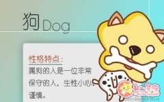 2017年生肖狗幸运色是什么?