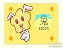 在童话世界中属兔的人会扮演哪个角色