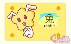 属兔男说我爱你的时候有几分真心