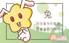 属兔男参加漫展最喜欢cos哪些角色