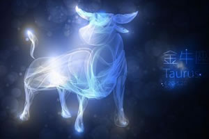 月亮星座金牛的情商高不高